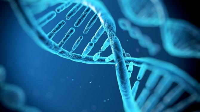 Gelecekte olması düşünülen 10 bilimsel gelişme 1