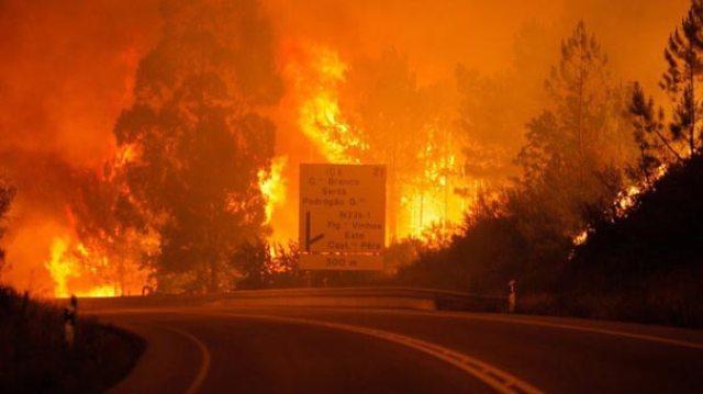 Portekiz'deki orman yangınlarında 35 kişi hayatını kaybetti