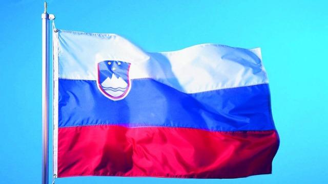 Slovenya'da cumhurbaşkanlığı seçimine doğru