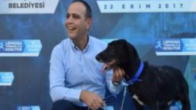 Yaralı halde bulunan ve Harmancı'nın sahiplendiği köpek için yuva da yaptırıldı