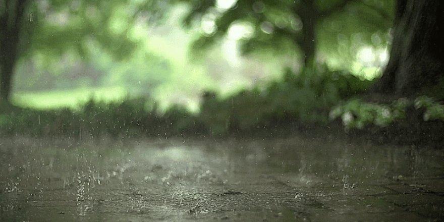 Hafta sonu hava yağmurlu olacak
