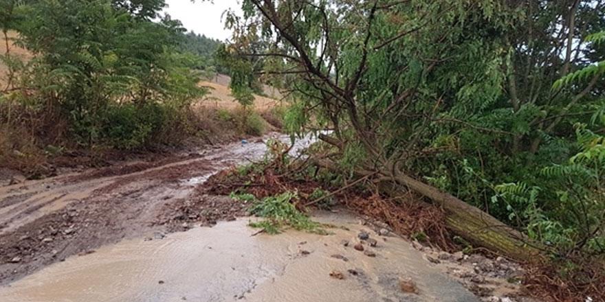 Sri Lanka'da olumsuz hava şartları nedeniyle 6 kişi hayatını kaybetti