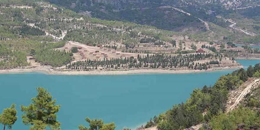 Geçitköy baraj bölgesine bugün fidanlar dikiliyor