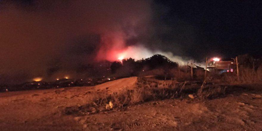 Karpaz'da korkutan yangın