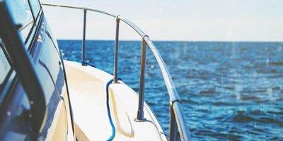 Avustralya'da tekneye atlayan köpek balığı korkuttu